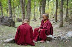 年轻西藏修士 免版税库存照片