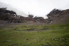 西藏冰川 库存照片