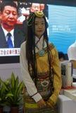 西藏女孩参加陈列 库存图片
