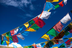 西藏旗子 免版税库存照片