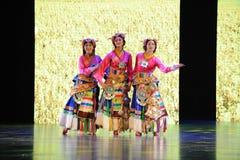 西藏服装女孩大标度情景show†路legend† 免版税库存图片