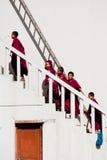 西藏男孩,新手和尚。印度 库存图片