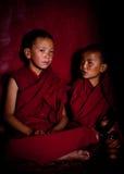 西藏男孩,新手和尚。印度 库存照片