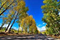 西藏的最美丽的路 库存图片