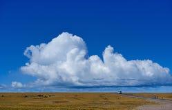 西藏的风景 图库摄影