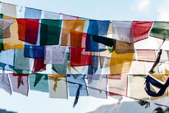 西藏祷告下垂挥动和包扎与树在sideway的一座山在有山的冻河在背景中在Thangu 免版税库存照片
