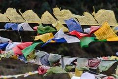 西藏祷告下垂挥动和包扎与树在sideway的一座山在有山的冻河在背景中在Thangu 库存照片