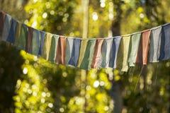 西藏祷告旗子和黄色叶子 库存图片