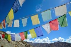 西藏祷告标志 库存照片