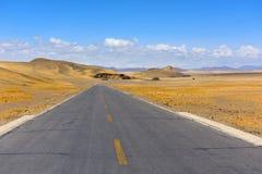 西藏美丽的路 库存图片
