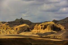 西藏萨格勒布土壤林 库存图片