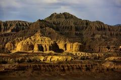 西藏萨格勒布土壤林 库存照片