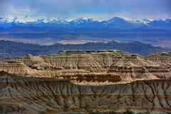 西藏萨格勒布土壤林 免版税库存图片