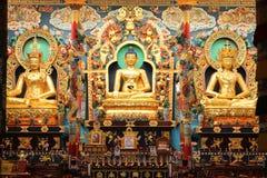 西藏金黄菩萨寺庙Coorg 库存照片
