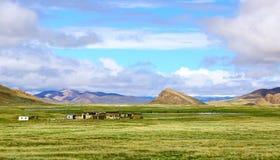 西藏阿里风景 免版税库存图片