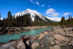西藏雪山的Ranwu河 图库摄影