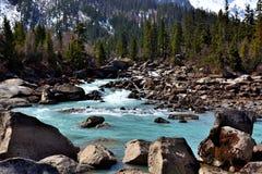 西藏雪山的Ranwu河 库存照片