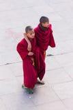 西藏年轻修士在Rumtek修道院前面走并且使用在高级修士以后在甘托克附近到达了 锡金,印度 免版税库存照片