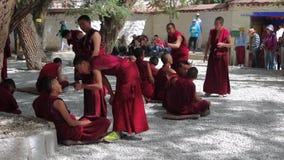 西藏2015年 股票录像