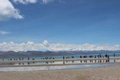西藏Nam Co 库存图片