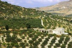 西西里人农厂的房子 免版税库存照片