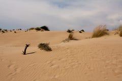 西西里岛沙丘 免版税库存照片