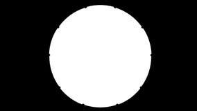 巴西足球 股票视频
