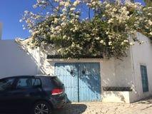 西迪布赛义德,白色和蓝色市的典型的街道在突尼斯在一个夏天晴天 免版税库存图片