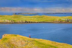 西部冰岛海岸 库存图片