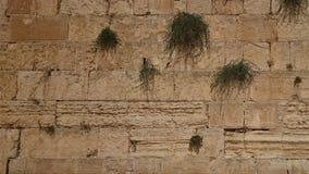 西部墙壁或哭墙是圣地对犹太教在耶路撒冷,以色列老  库存图片