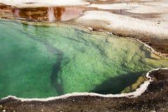 西部拇指喷泉水池铜,绿色和黄色, nat的Yellostone 免版税库存照片