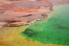 西部拇指喷泉水池铜,绿色和黄色, Yellostone Nati 库存照片