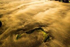 西部沙漠埃及撒哈拉大沙漠含沙的通知 图库摄影