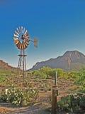 西部沙漠的场面 免版税库存照片