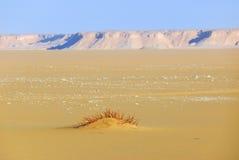西部沙漠,撒哈拉大沙漠,埃及 免版税库存图片