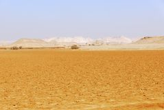 西部沙漠,自己的卡黛哈,埃及 免版税库存图片