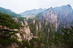 西部海谷悬崖  图库摄影