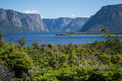 西部溪池塘在纽芬兰的格罗莫讷国家公园 免版税库存照片