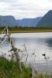 西部溪的池塘 图库摄影