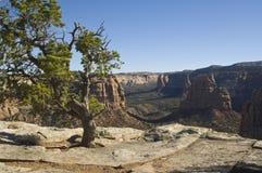 西部的峡谷 免版税库存图片