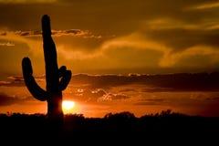 西部的日落美国 库存照片