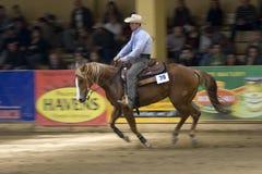 西部竞争的骑马 库存照片