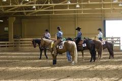 西部竞争的骑马 库存图片