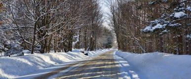 西部纽约冬天 免版税库存图片