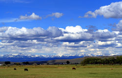 西部美丽的地产 免版税库存照片