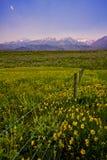 西部美国风景 免版税图库摄影