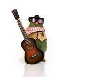 西部鲕梨的吉他 免版税库存照片
