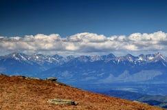 西部Tatra山峰顶在白色下的覆盖斯洛伐克 库存图片