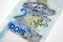 巴西金钱 图库摄影