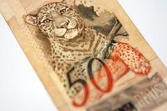 巴西金钱 免版税图库摄影